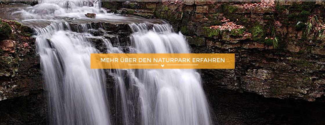 Teaser Natur und Landschaft
