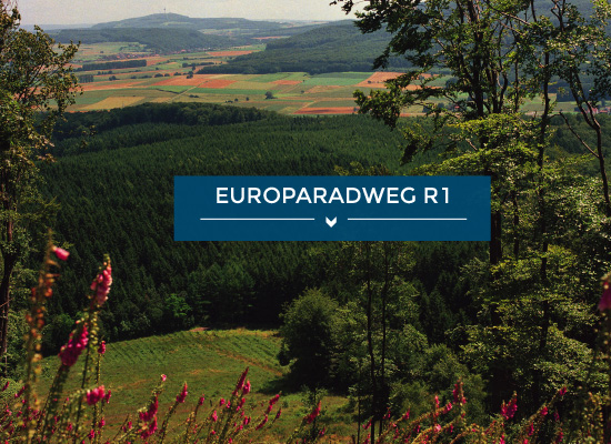 Teaserbild Europaradweg R1