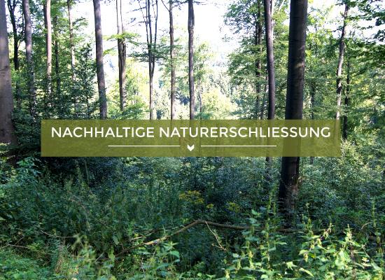 Teaserbild nachhaltige Naturerschliessung