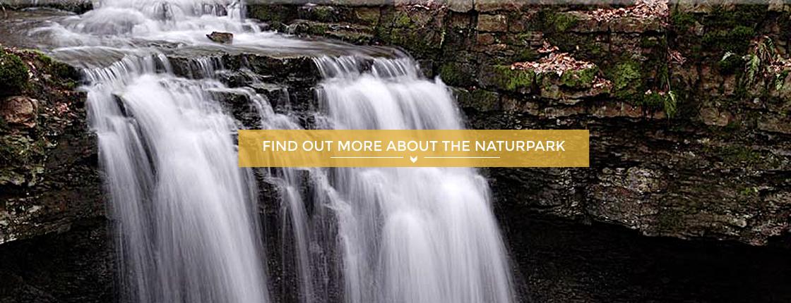 teaser image Nature & Landscape