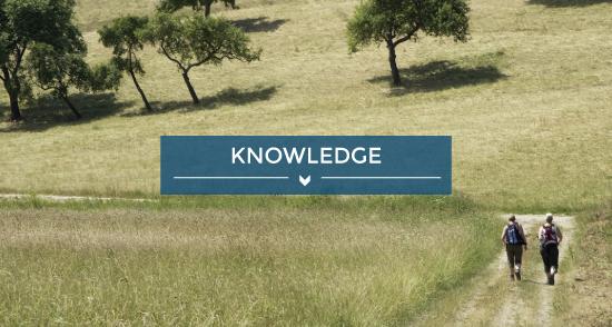 teaser image knwoledge