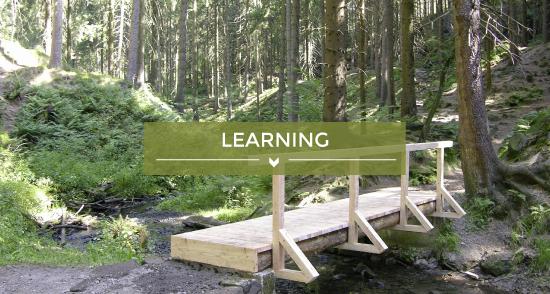 teaser image learning
