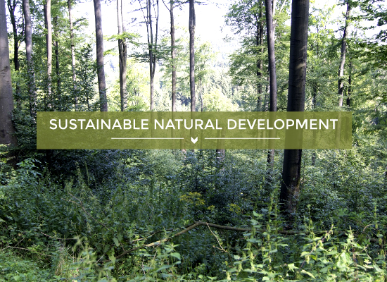 teaser image Sustainable natural development