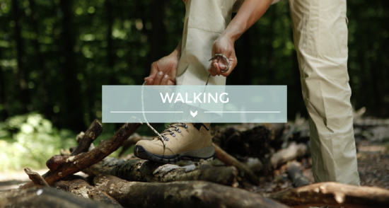 teaser image walking