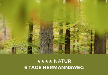 Teaserbild Natur - 6 Tage Hermannsweg