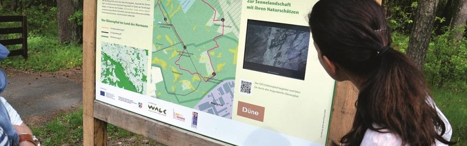 Rundwanderweg Augustdorfer Dünenfeld