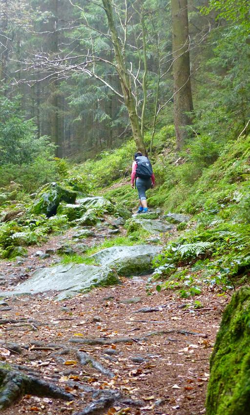 Wellness-Bloggerin wandert im Teutoburger Wald