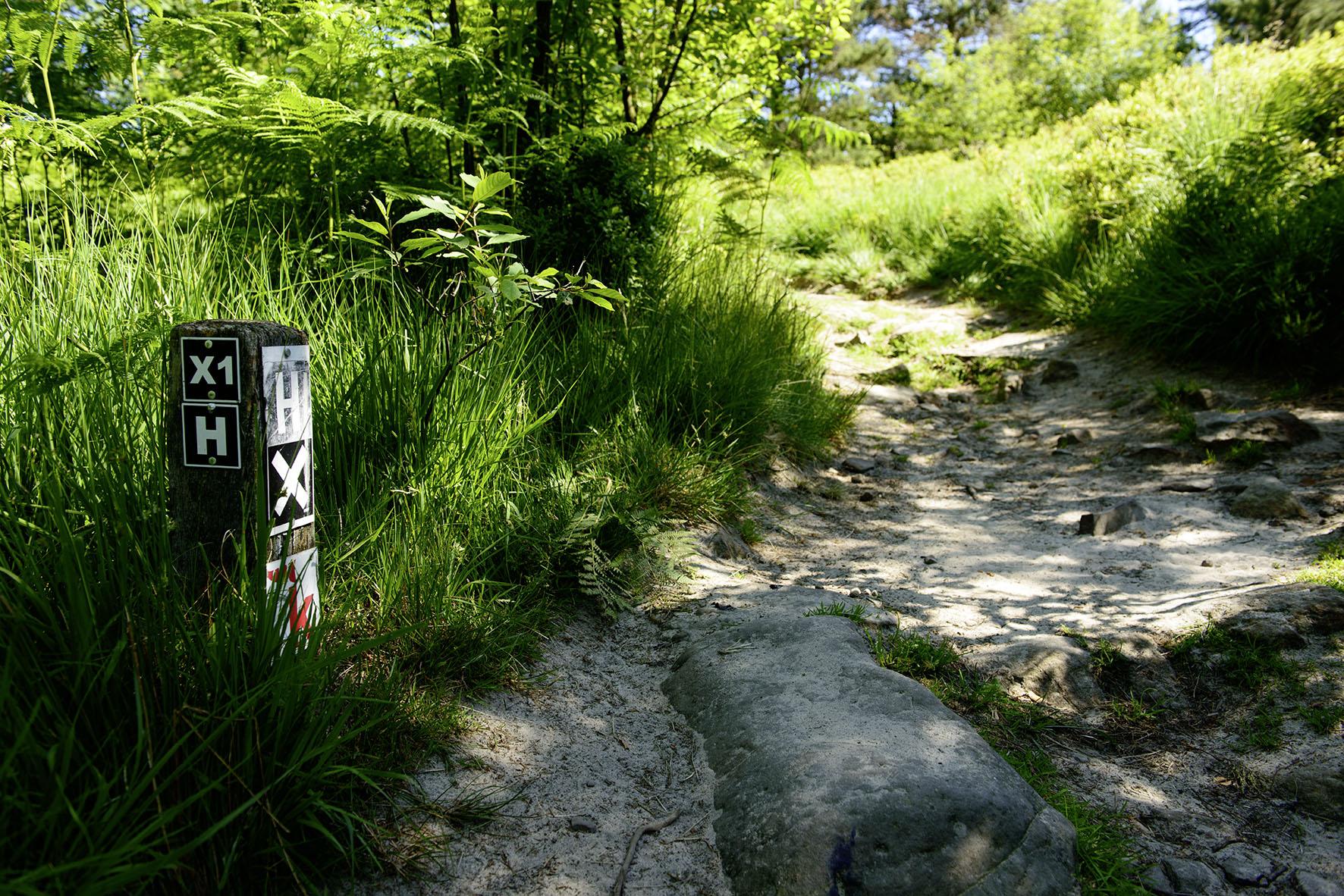 Wegemarkierung Hermannsweg